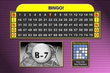 BINGO! Software (Printable Cards)